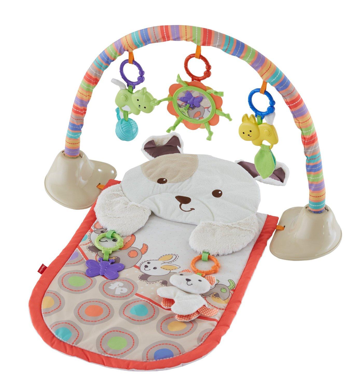 Cuddle n Play Gym My Little Snugapuppy Best Educational Infant