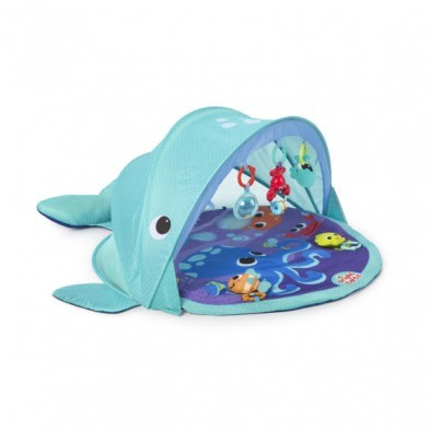 Bright Starts Explore and Go Whale Gym mat