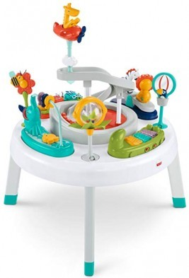 Fisher Price 2 in 1 Sit to Stand Activity Center