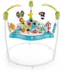 Fisher Price Color Climbers Jumperoo