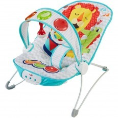 Fisher Price Kick n Play Musical Bouncer FFX45