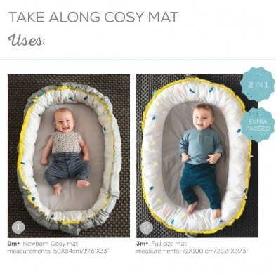 Taf Toys 2 in 1 Take Along Cosy Mat