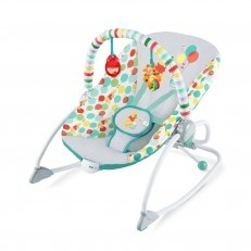 Winnie The Pooh Happy As Can Bee Infant To Toddler Rocker