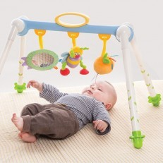 Take-to-Play Baby Gym